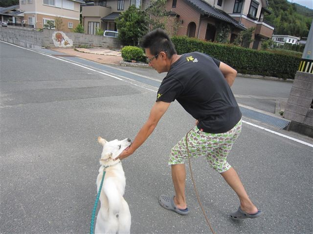 f:id:yasukazu01:20120917120501j:image