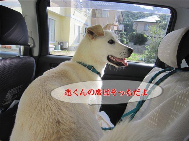 f:id:yasukazu01:20120918090529j:image