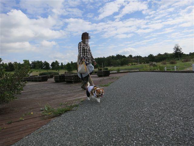 f:id:yasukazu01:20120918094828j:image