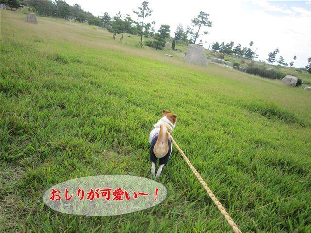 f:id:yasukazu01:20120918094839j:image