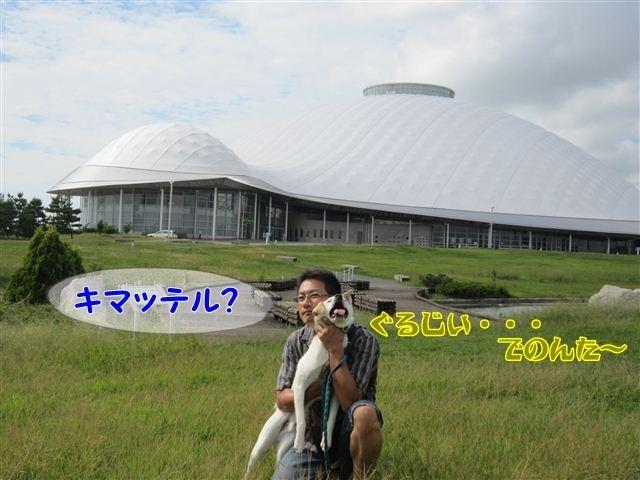 f:id:yasukazu01:20120918094954j:image