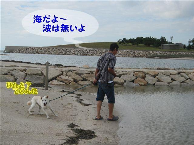 f:id:yasukazu01:20120918095622j:image