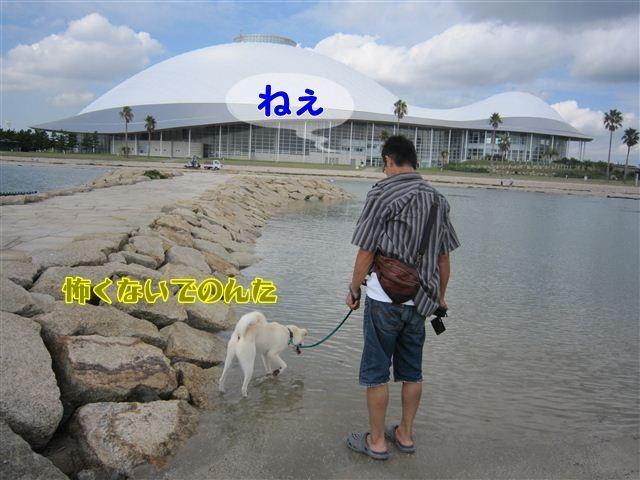 f:id:yasukazu01:20120918095651j:image