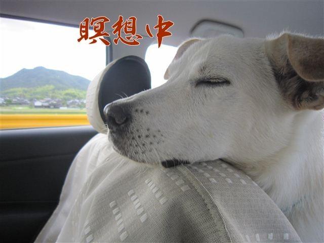 f:id:yasukazu01:20120918104241j:image