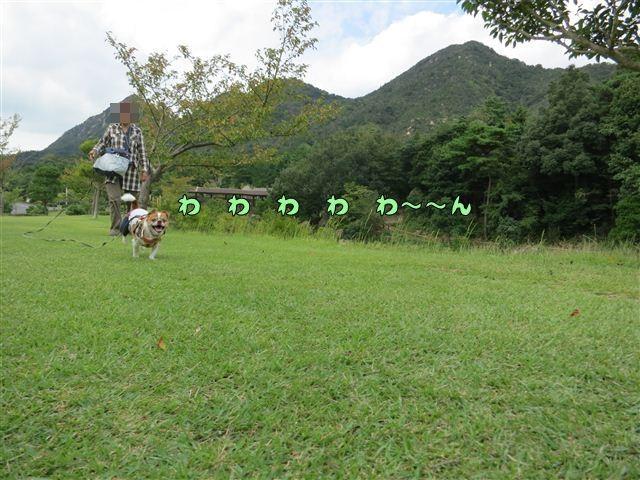 f:id:yasukazu01:20120918104828j:image
