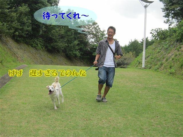 f:id:yasukazu01:20120918105407j:image