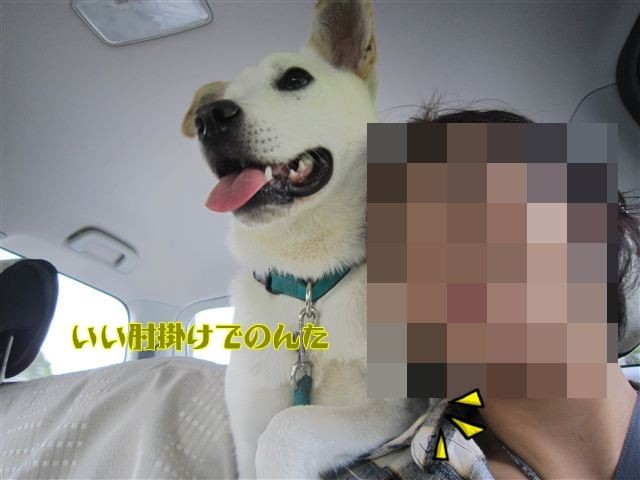 f:id:yasukazu01:20120918113446j:image