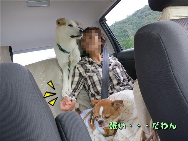f:id:yasukazu01:20120918113458j:image