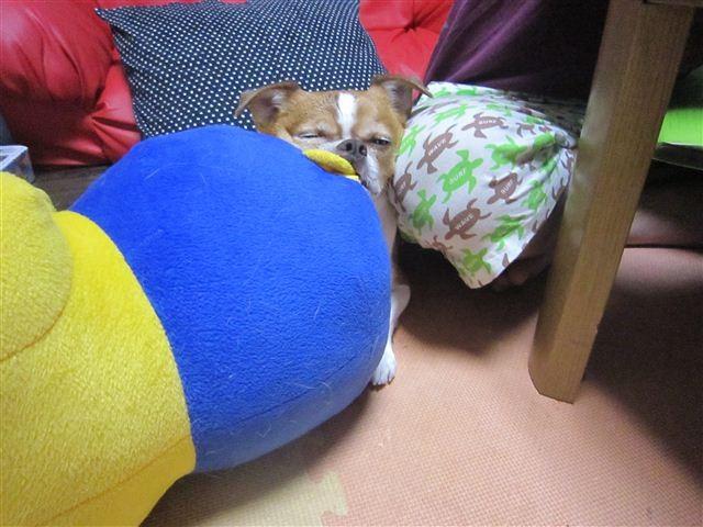 f:id:yasukazu01:20120919225647j:image