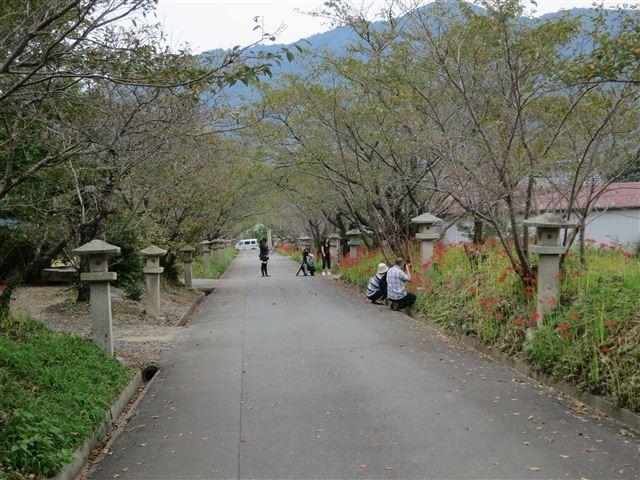 f:id:yasukazu01:20120922133525j:image