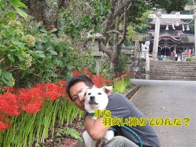 f:id:yasukazu01:20120922133903j:image