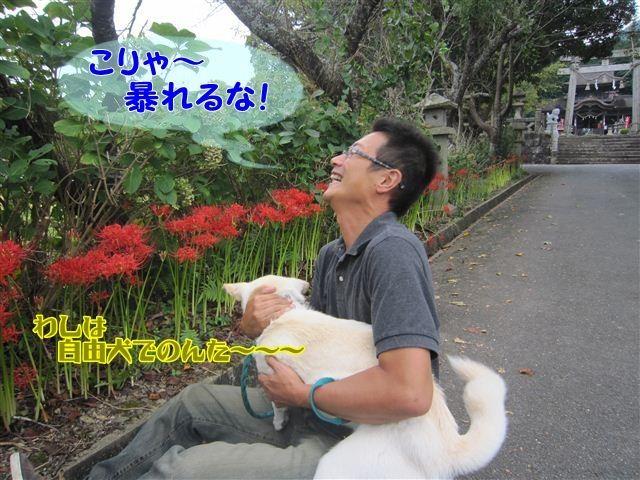f:id:yasukazu01:20120922133916j:image