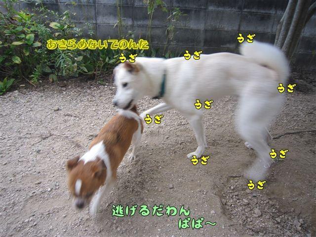 f:id:yasukazu01:20120922165746j:image