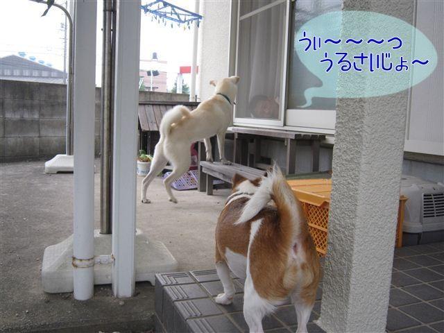 f:id:yasukazu01:20120922165914j:image
