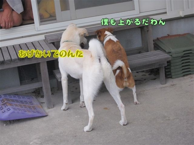 f:id:yasukazu01:20120922171534j:image