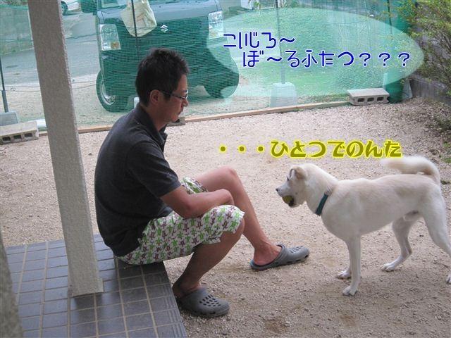 f:id:yasukazu01:20120922172011j:image