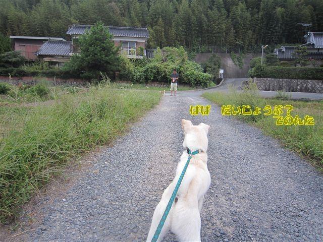 f:id:yasukazu01:20120922173430j:image