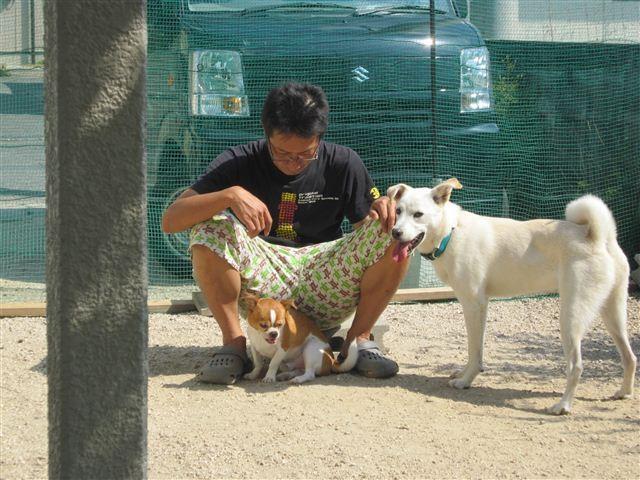 f:id:yasukazu01:20120928132716j:image