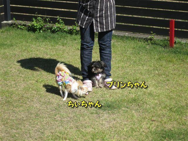 f:id:yasukazu01:20121003101548j:image