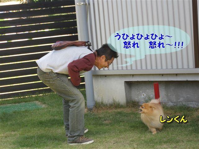 f:id:yasukazu01:20121003110314j:image