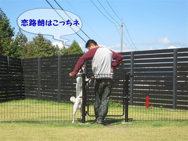 f:id:yasukazu01:20121003113830j:image
