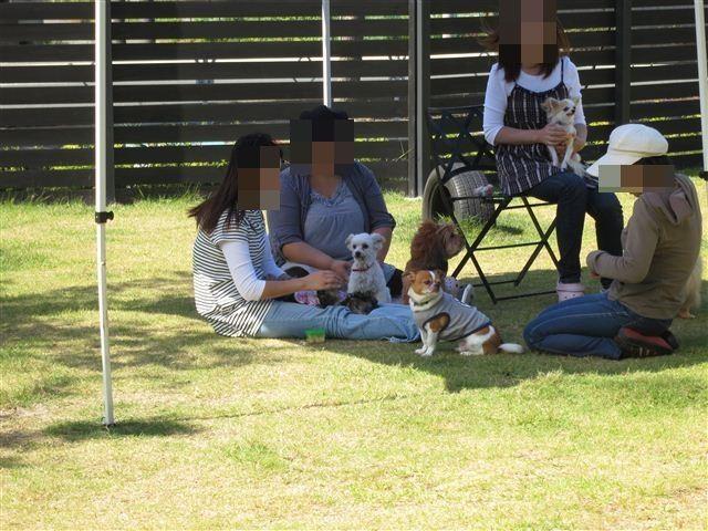 f:id:yasukazu01:20121003115101j:image