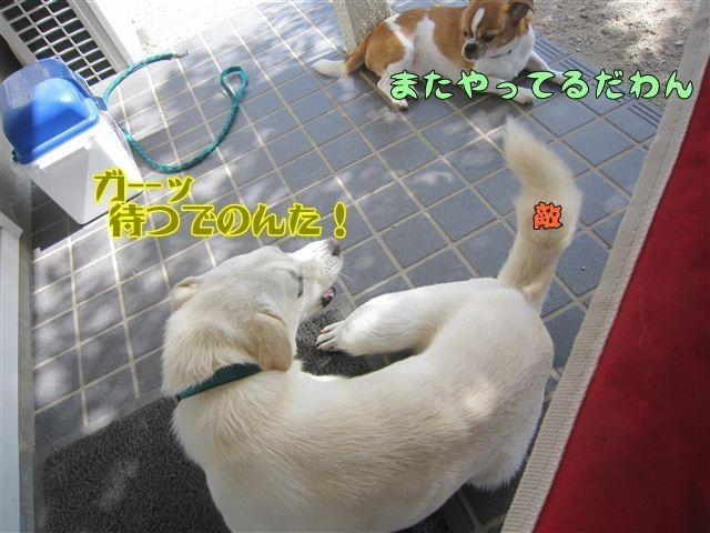 f:id:yasukazu01:20121004122257j:image