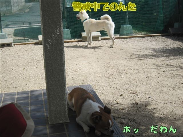 f:id:yasukazu01:20121004123104j:image