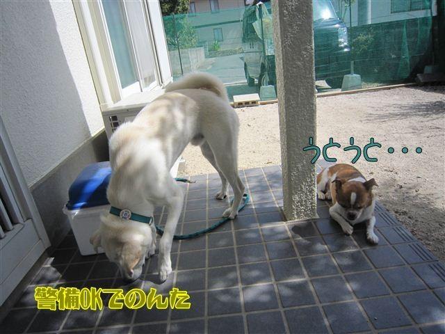 f:id:yasukazu01:20121004123149j:image