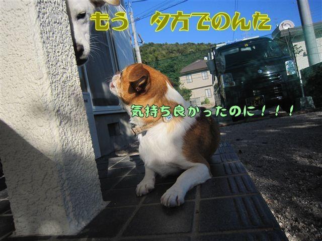f:id:yasukazu01:20121004161500j:image