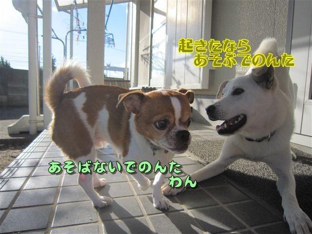 f:id:yasukazu01:20121004161530j:image