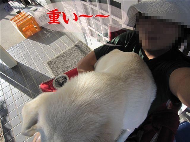 f:id:yasukazu01:20121004161716j:image