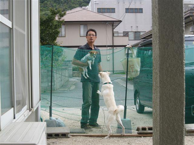 f:id:yasukazu01:20121006120711j:image