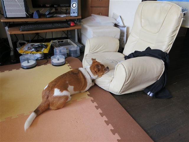 f:id:yasukazu01:20121008131742j:image