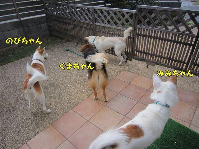 f:id:yasukazu01:20121008160800j:image