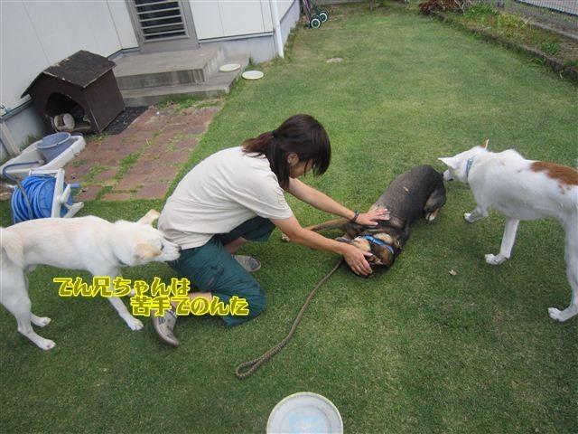 f:id:yasukazu01:20121008162547j:image