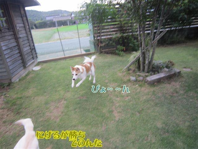 f:id:yasukazu01:20121008163344j:image