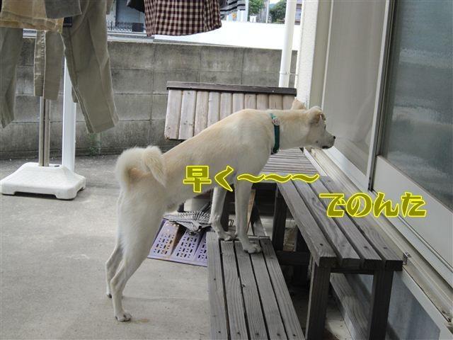 f:id:yasukazu01:20121013120846j:image