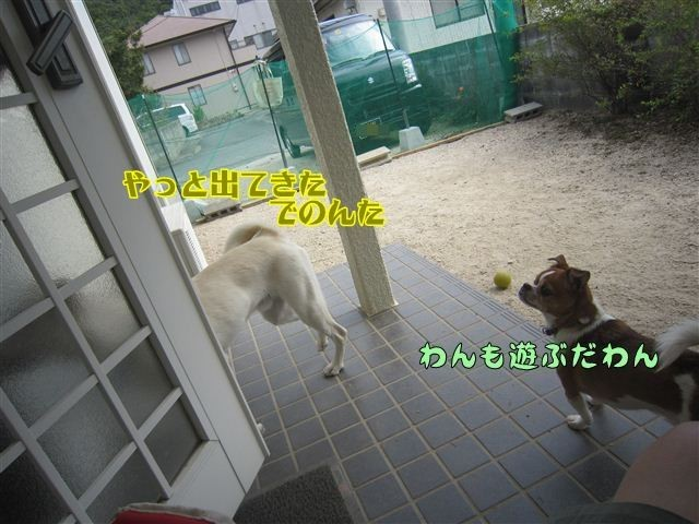 f:id:yasukazu01:20121013121144j:image