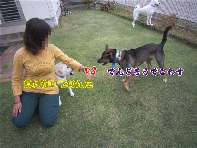f:id:yasukazu01:20121014161712j:image
