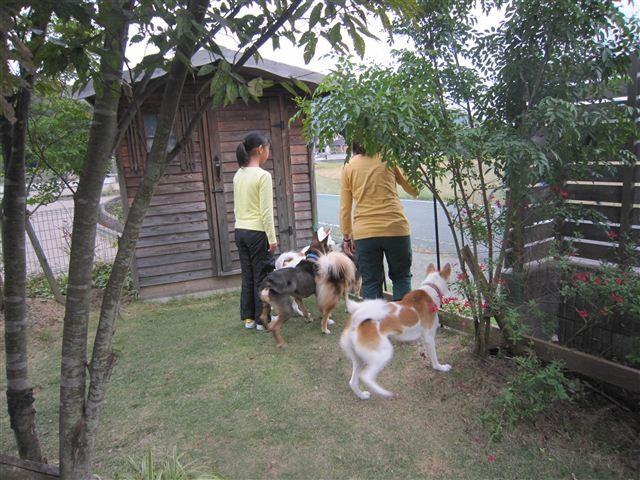 f:id:yasukazu01:20121014162221j:image