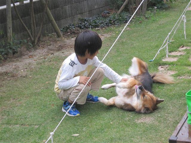 f:id:yasukazu01:20121014162423j:image