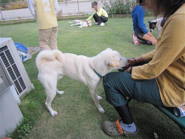 f:id:yasukazu01:20121014163752j:image