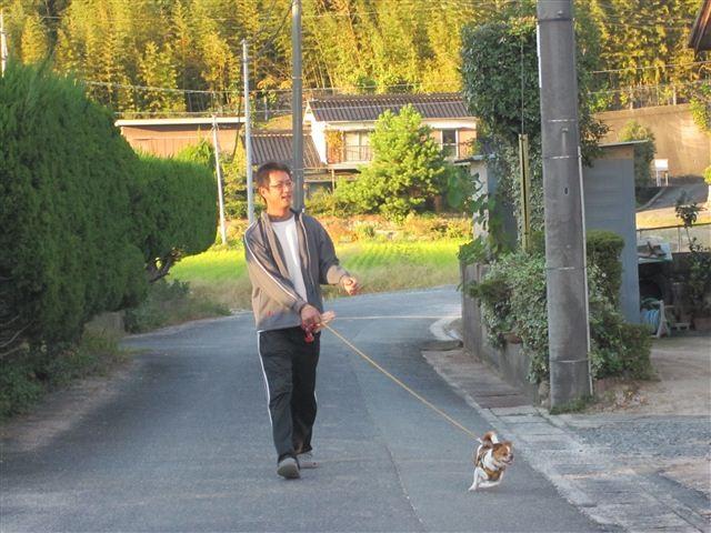 f:id:yasukazu01:20121019164439j:image