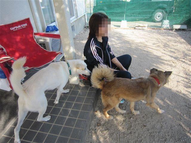 f:id:yasukazu01:20121021150412j:image