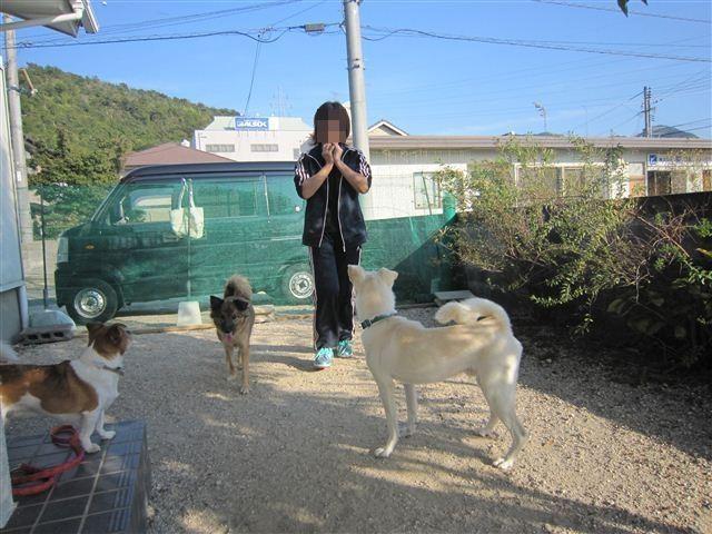 f:id:yasukazu01:20121021153101j:image