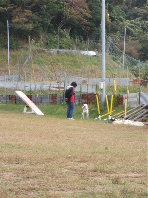 f:id:yasukazu01:20121031134448j:image