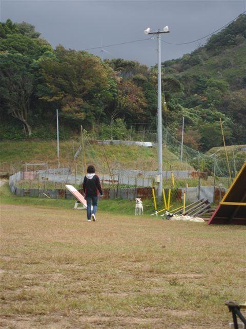 f:id:yasukazu01:20121031134807j:image