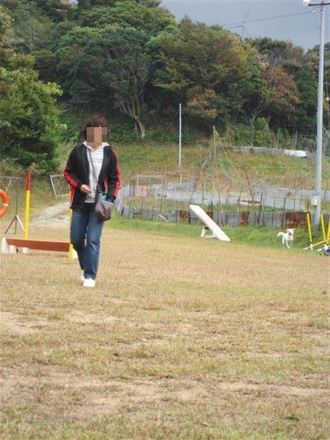 f:id:yasukazu01:20121031134901j:image