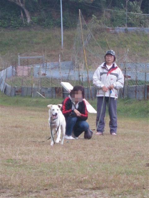 f:id:yasukazu01:20121031141135j:image